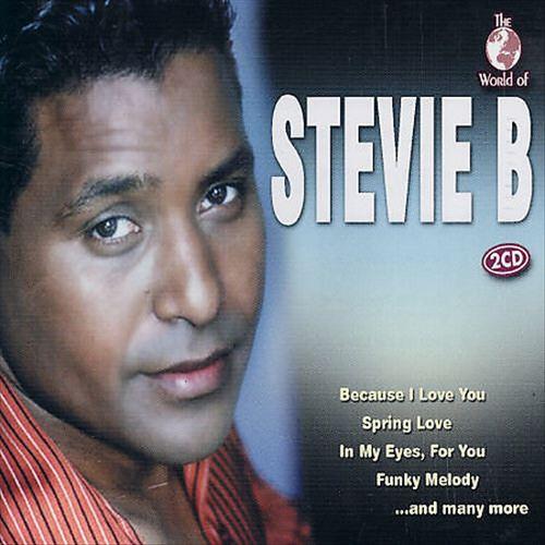 The World of Stevie B