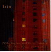 Pitch, Rhythm and Consciousness