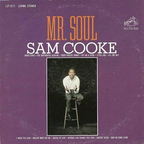 Mr. Soul