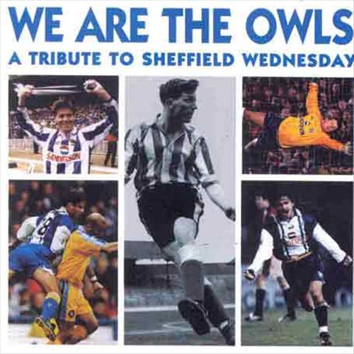 We Are the Owls