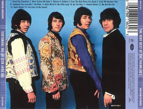 The Very Best of the Tremeloes [Sanctuary]