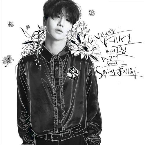 Spring Falling: The 2nd Mini Album