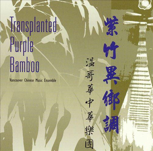 Transplanted Purple Bamboo