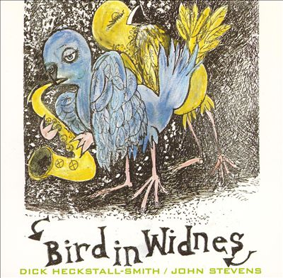 Bird in Widnes