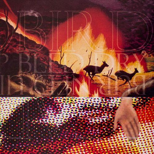 Deadbird/Burned Up Bled Dry