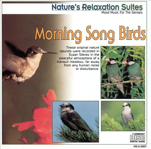 Nature's Relaxation Suites: Morning Song Birds