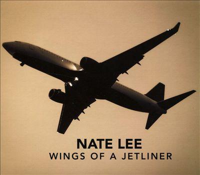 Wings of a Jetliner