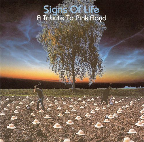 Tribute Angular: Signs of Life