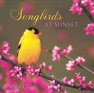 Songbirds at Sunset