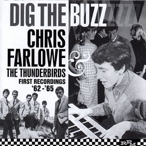 Dig the Buzz: The Complete Recordings 1962-1965
