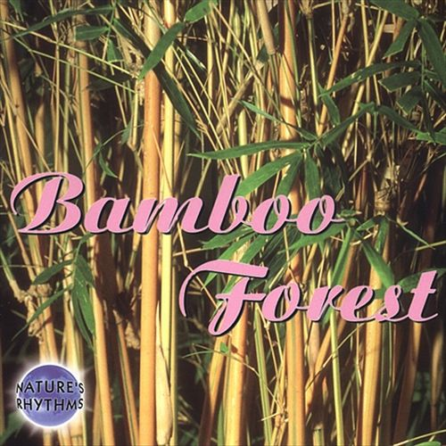 Nature's Rhythms: Bamboo Forest