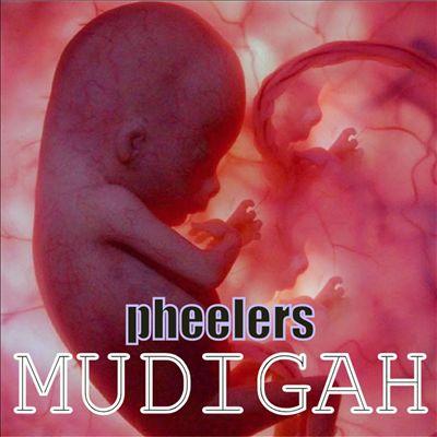 Mudigah