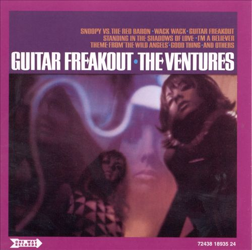 Guitar Freakout/Wild Things!
