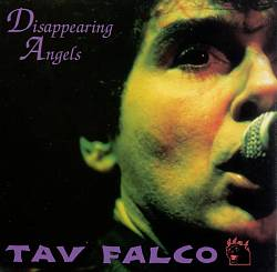 Disappearing Angels