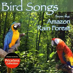 Bird Songs of Amazon Rainforest