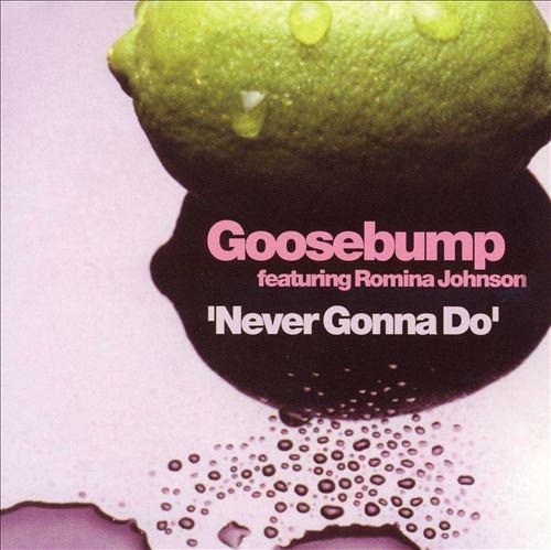 Never Gonna Do [CD/12