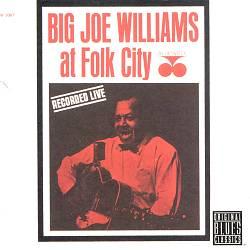 Big Joe Williams at Folk City