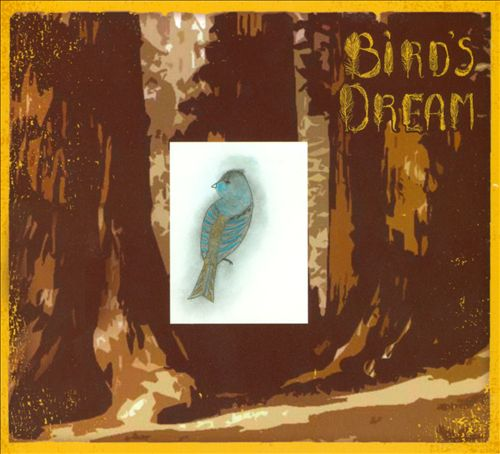Bird's Dream