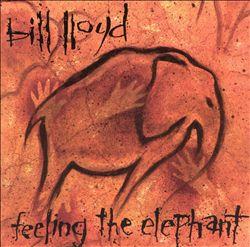 Feeling the Elephant