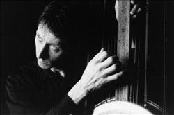 Peter Whitehead
