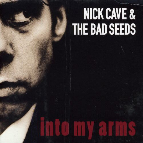 Into My Arms