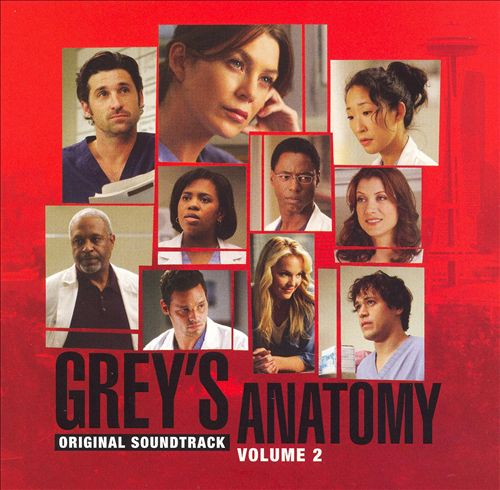 Grey's Anatomy, Vol. 2