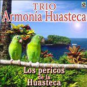 Los Pericos De La Huasteca