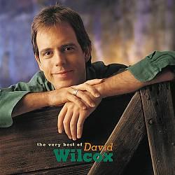 The Very Best of David Wilcox