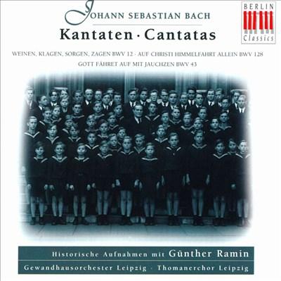 Bach: Contatas