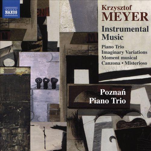 Krzysztof Meyer: Instrumental Music