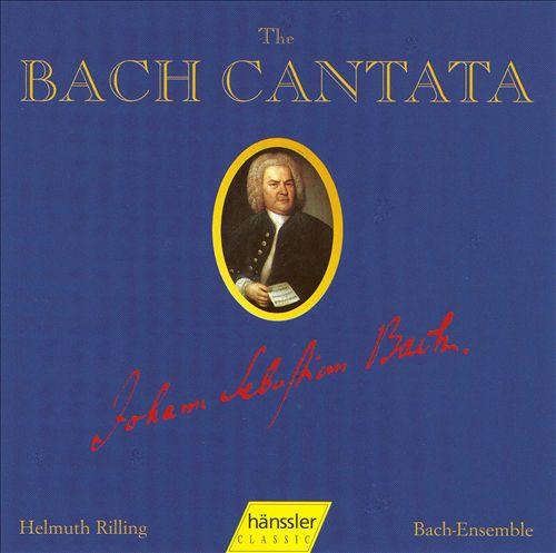 Die Bach Kantate, Vol. 28