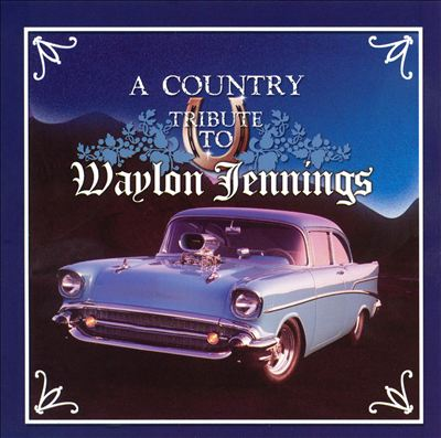 DJ as Seen on TV:  a Country Music Tribute to Waylon Jennings