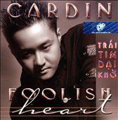 Trai Tim Dai Kho (Foolish Heart)