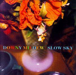 Slow Sky
