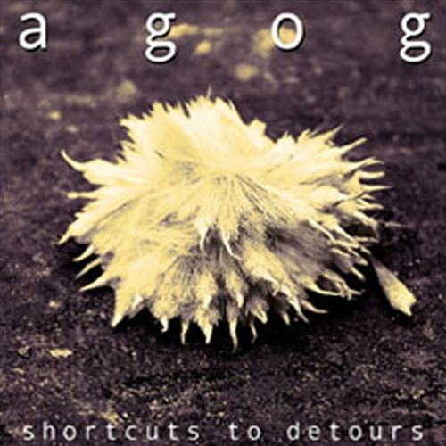 Shortcuts to Detours