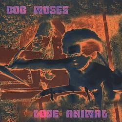 Love Animal