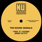 Feel It/Extasy (What Is It?)