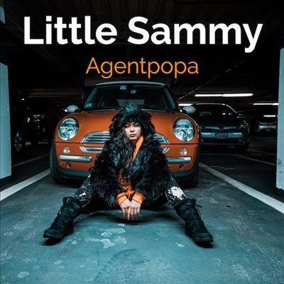 Little Sammy