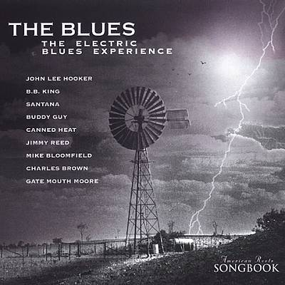 The Blues - The Electric Blues Experience