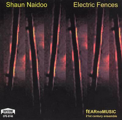 Shaun Naidoo: Electric Fences