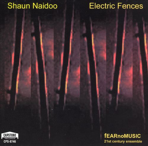 Shaun Naidoo: Electric Fences