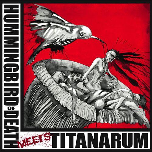 Hummingbird of Death Meets Titanarum