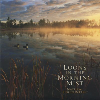Natural Encounters: Loons in the Morning Mist