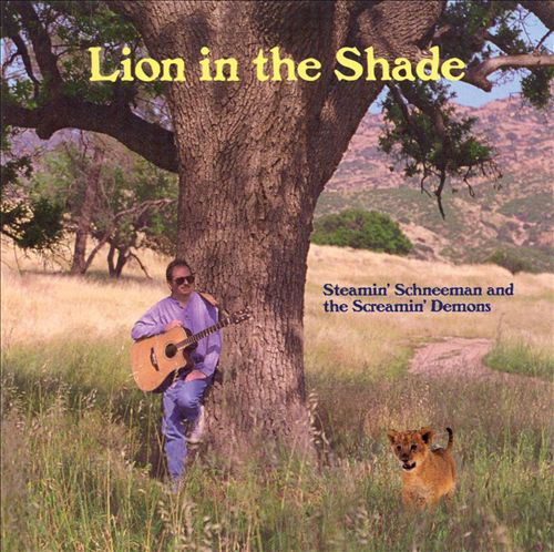 Lion in the Shade