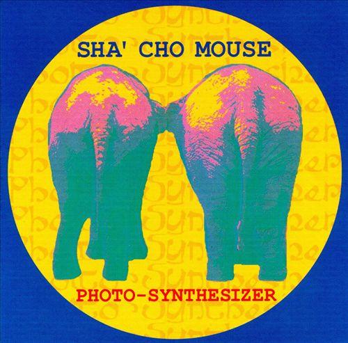 Photo-Synthesizer