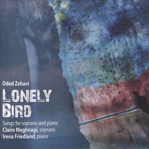 Oded Zehavi: Lonely Bird
