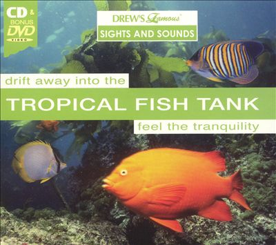 Drew's Famous Sights and Sounds: Tropical Fish Tank