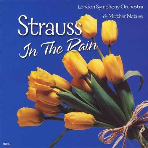 Strauss in the Rain