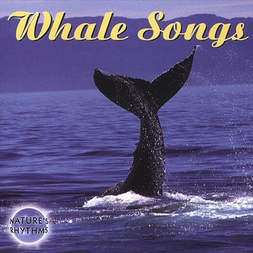 Nature's Rhythms: Whale Songs