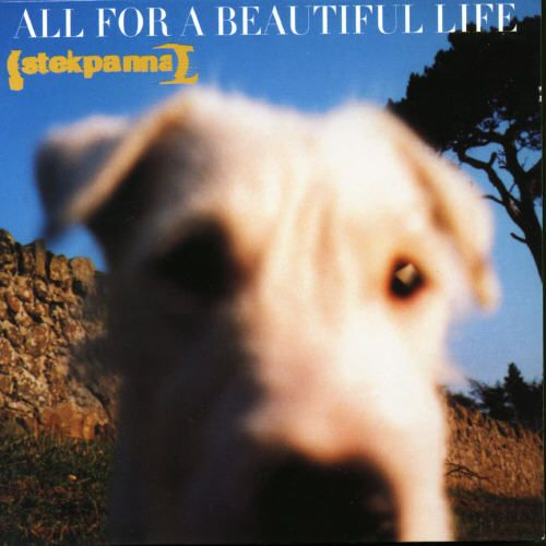 All for a Beautiful Life